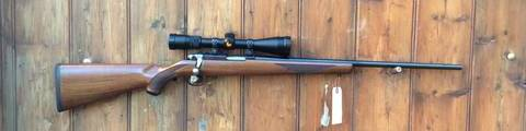 Ruger 77/17 .17HMR Bolt Action Scoped Rifle