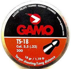 Gamo TS-18 .22Cal Air Rifle Pellets Qty 200