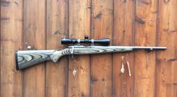 Ruger 7717 17Mach2 Scoped Rifle