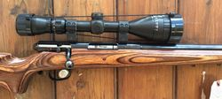 Savage Mdl 25 Light Varmint 17Hornet Scoped Rifle