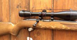 Stevens MDL34 22LR Rifle