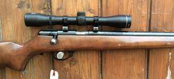Stirling 14P 22LR Rifle